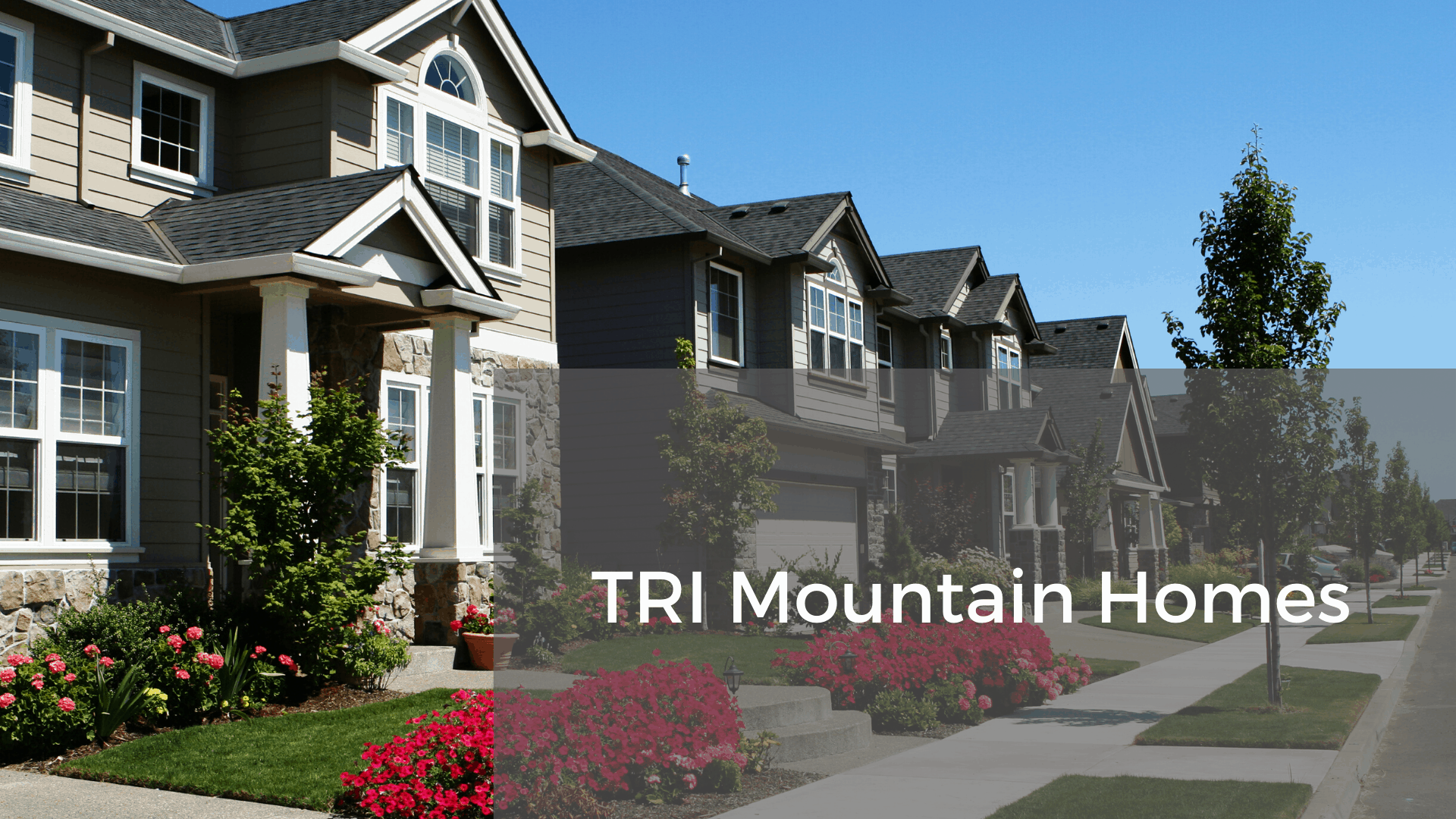Tri Mountain Homes